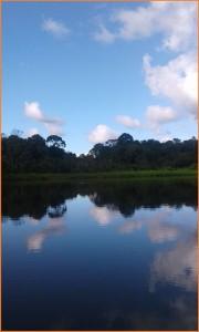 NAPO RIVER AMAZON BASIN ECUADOR