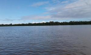 NAPO RIVER. AMAZON ECUADOR